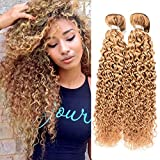 Best blonde curly hair extensions reviews 1 top hair 7a peruvian jerry curly hair weft 3 bundles 100 human extension virgin hair pmusecretfo Choice Image
