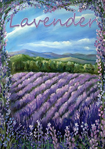 Lavender Hill Floral (Toland Home Garden Lavender Fields 12.5 x 18 Inch Decorative Spring Summer Purple Flower Garden Flag)