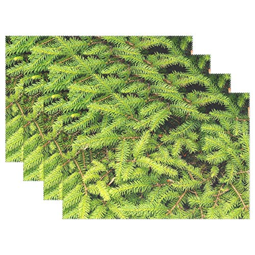 JTMOVING Fir Tree Green Forest Branch Needles Placemats Set Of 4 Heat Insulation Stain Resistant For Dining Table Durable Non-slip Kitchen Table Place Mats