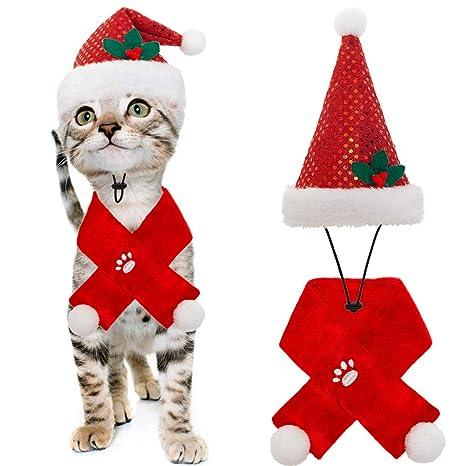 BINGPET - Disfraz de Gato de Navidad con Bufanda y Sombrero ...