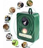 Hqadd Repelente para Gato,Repelente de Animales ultrasónico con energía Solar Impermeable al Aire Libre con Sensor PIR…