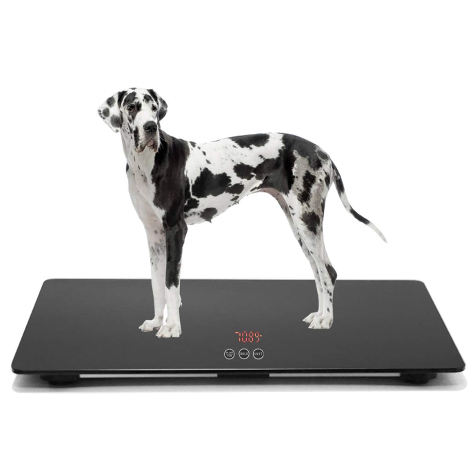 JAWELLT Large Digital Scale for Large Dogs Veterinarians Capacity is 100 kg (±10 g), Touch Button, 90 (Long) x 60 (Width) cm