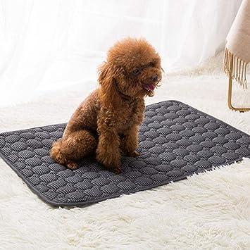 Mignon84Cook para Mascotas, Almohadilla eléctrica para Calentar Mascotas, Almohadilla de Perro con Calentamiento de grafeno, Cama Antideslizante para ...