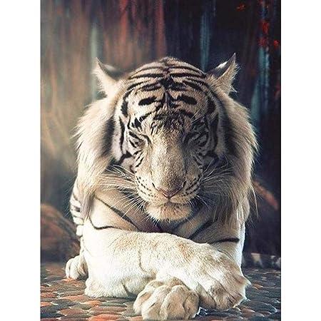 DPDecor Completo 5D Diy Diamante Pintura Bengala Tigre ...