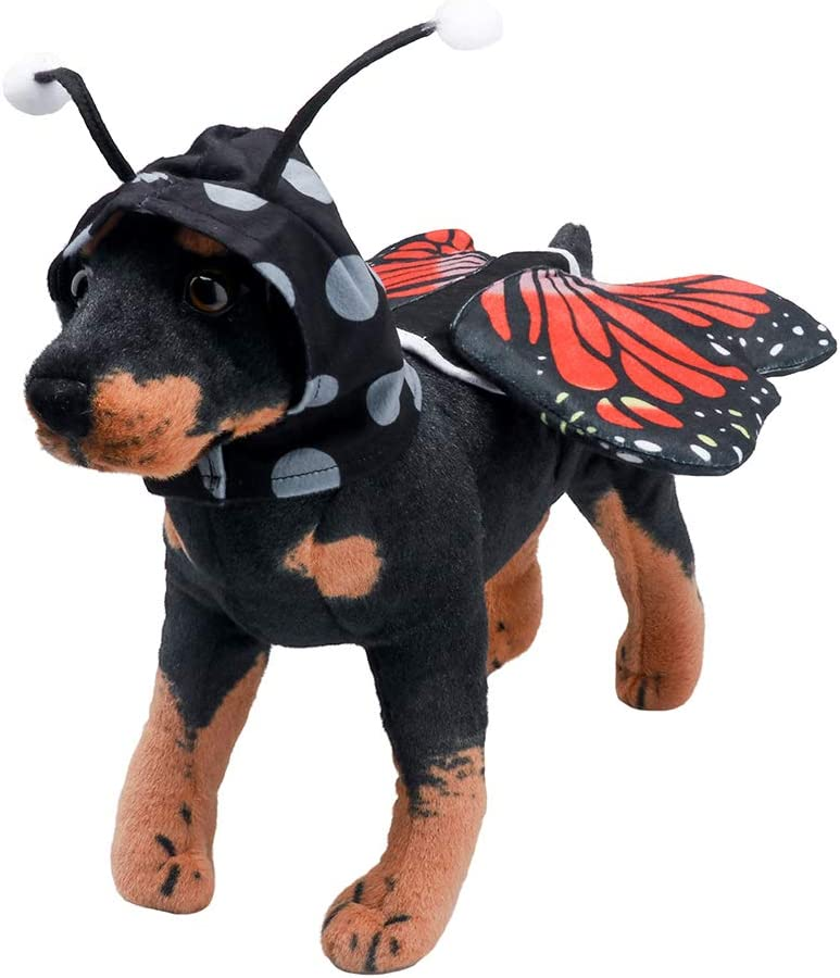 s/ü/ßes Monarch-Schmetterlingskost/üm Coppthinktu Schmetterlingskost/üm f/ür Hunde lustiges Halloween-Hundekost/üm