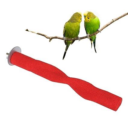 POPETPOP Soporte de Loro de 2x20 cm, Soporte de pájaro, Varita de ...