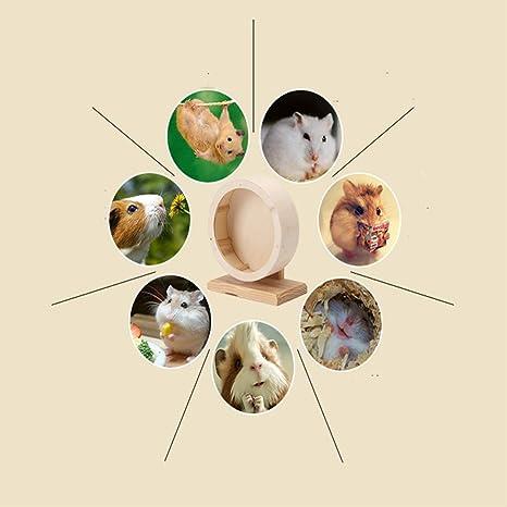 scoiattoli Ruota in Legno per Esercizi di criceti Altri Piccoli Animali Adatta per furetti cincill/à criceti MQUPIN