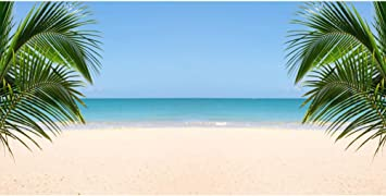 YEELE 6.5x6.5ft Sunny Seascape Backdrop Happy Summer Holidays Photography Background Tropical Vacation Natural Landscape Kids Adults Portrait Birthday Photobooth Props Wallpaper