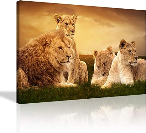 Male Lion face Wildlife animal 5 Pcs Canvas Print Poster HOME DECOR Hang Picture