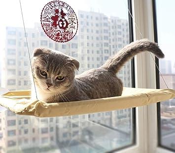 Amazon.com: HOMZE - Colgante para cama de gato, hamaca ...