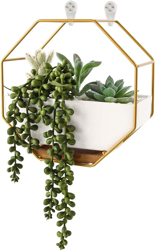 Superbpag Wall Planters White Ceramic Hanging Succulent Planter Pot with Drainage Hole, Air Plants Mini Cactus Live Artificial Cactus Flower Pot DesktopContainer for Home Office Decor, Gold