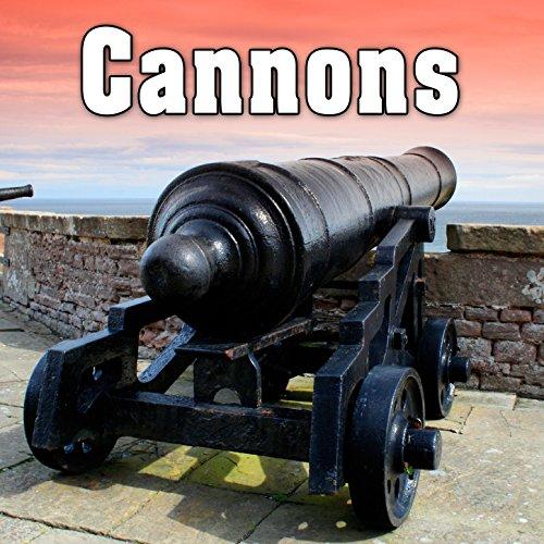 Three 20 Mm Anti Aircraft Cannon Firing a Single Shot 3