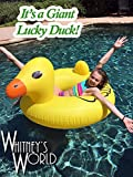 It's a Giant Lucky Duck!