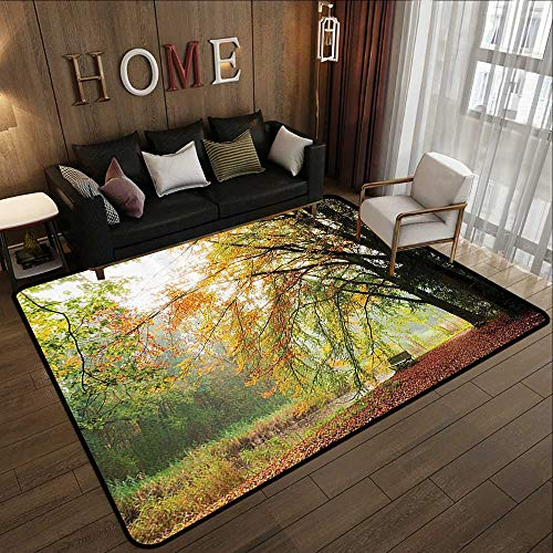 - Rugs,Farm House Decor,Autumn View in A Forest with Faded Color Leaves European Northern Dutch Fall Image,Orange Green 47