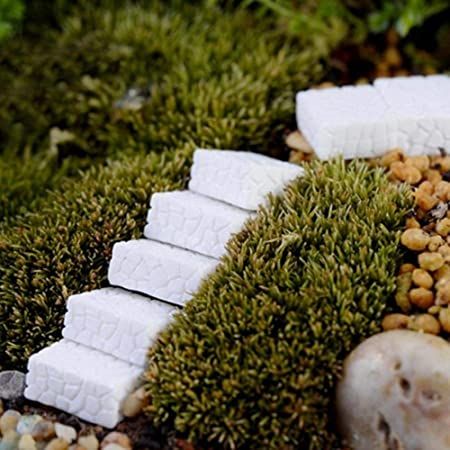 Gbcyp 10pcs Square Stepping Stone Figures Escalera Figura para Mini jardín de Hadas Micro Paisaje Animal Estatua Resina artesanía, Blanco: Amazon.es: Hogar