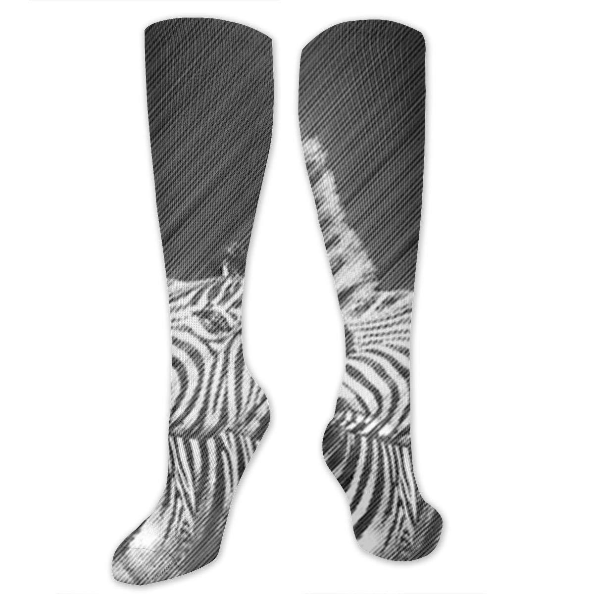 Chanwazibibiliu Zebra Mens Colorful Dress Socks Funky Men Multicolored Pattern Fashionable Fun Crew Cotton Socks