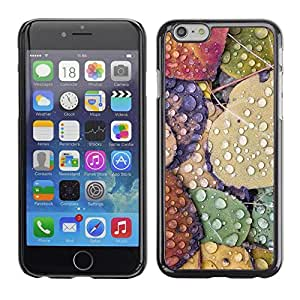 FECELL CITY // Duro Aluminio Pegatina PC Caso decorativo Funda Carcasa de Protección para Apple Iphone 6 // Leaves Rain Autumn Fall Dew Drops Nature