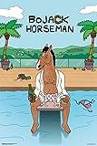 Bojack Horseman- Hollywood Poolside Poster 24 x 36in