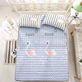 Collapsible Thin 100% cotton Mattress,Tatami mats Carpet For [individual] [double] [nap] [child] Student-E 180x200cm(71x79inch)
