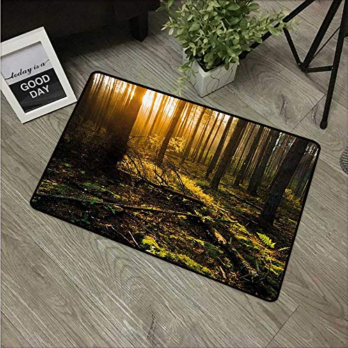HRoomDecor Nature,Custom Door mats Misty Morning in The Forest with Sun Rays Mother Earth Foliage Dawn Picture W 31