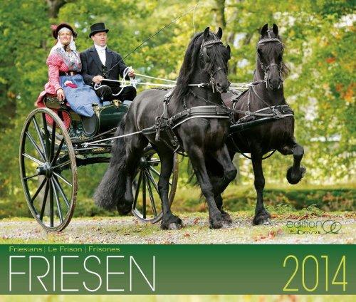 Friesen Pferde 2014 Kalender - 46x39 cm