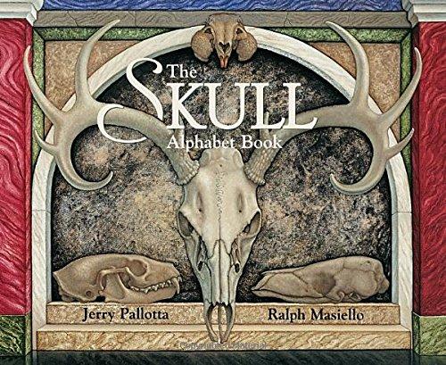 Skull Alphabet Book Jerry Pallotta