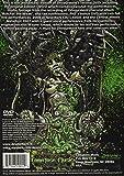 DVD 2.5