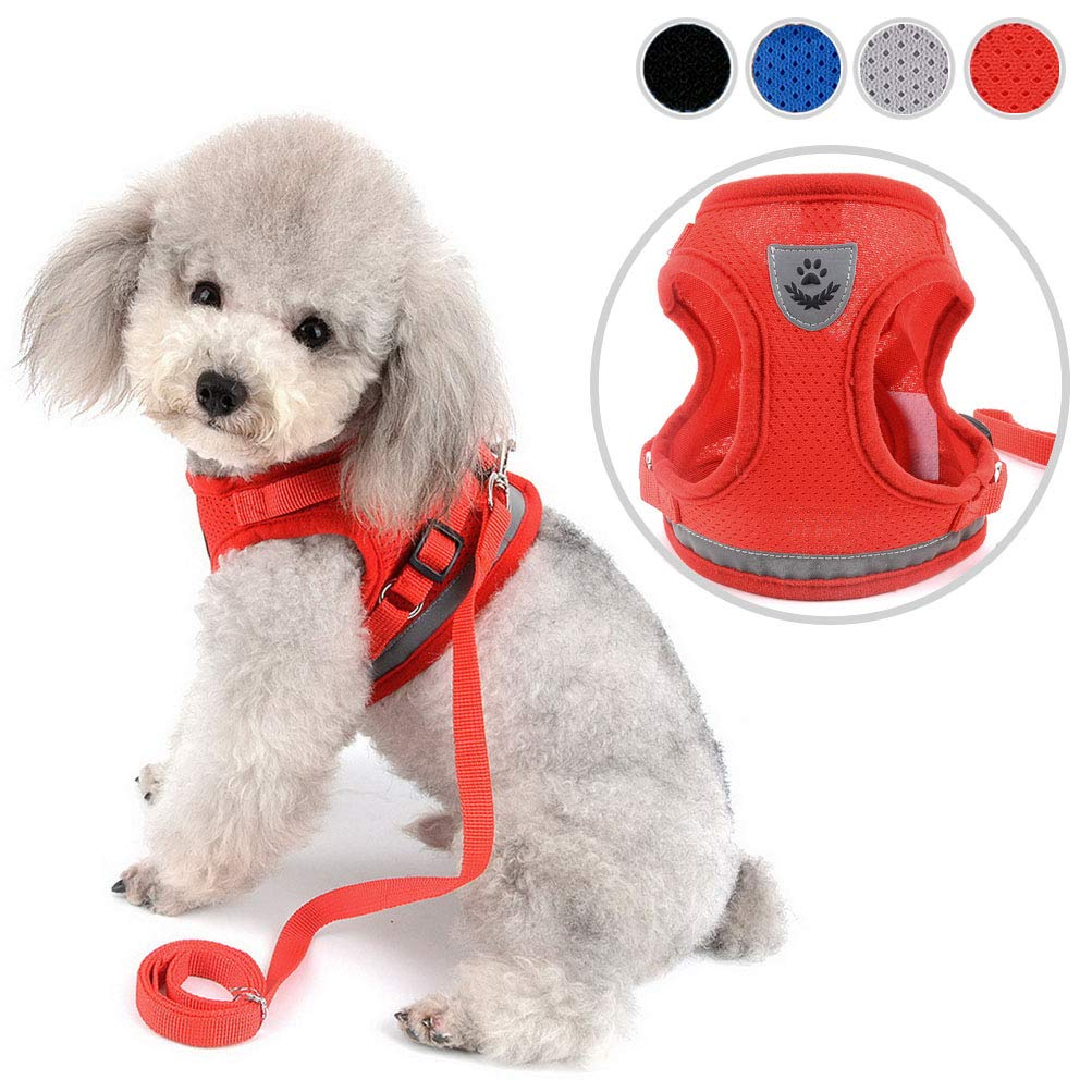 Puppy Kitten Lead Escape Proof for Daily Walking Red XS Zunea No Pull Dog Harness for Small Dog Cat Reflective Breathable Soft Mesh Padded Step-in Vest Harnesses Leash Set