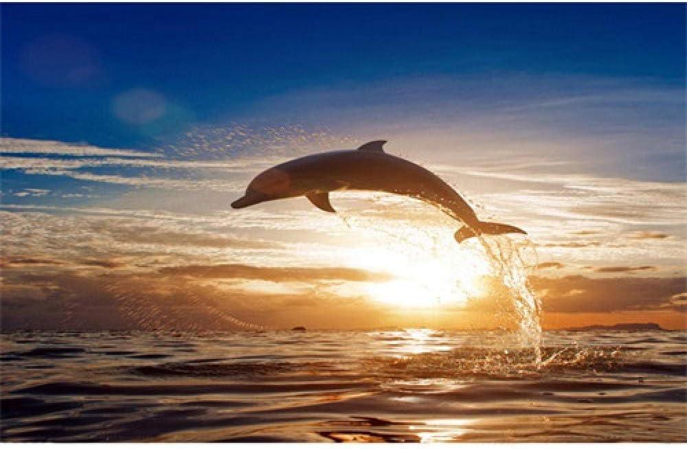 HJKGSX DIY Pintura al óleo por números - Delfines de mar - Kits Pintados a Mano para Colorear Lienzo Cuadros Arte de la Pared decoración para el hogar,Sin Marco 40x50cm