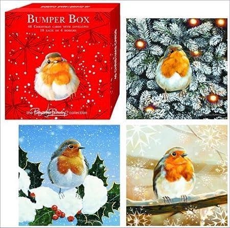 christmas robins christmas card bumper box 40 cards by pollyanna pickering - Christmas Pollyanna