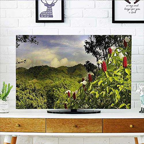 Auraisehome TV dust Cover Scenery Costa Rica Countryside Greenery Tropic Accents Botanical Green Red Violet Blue TV dust Cover W19 x H30 INCH/TV 32