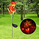 Winterworm Orange Solar 4 LED Lily Flower Light Outdoor Garden Lawn Color Changing Lamp For Sale