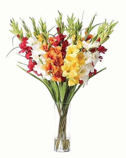 Amazon gladiolus silk flower arrangement mixed colors home gladiolus silk flower arrangement mixed colors mightylinksfo