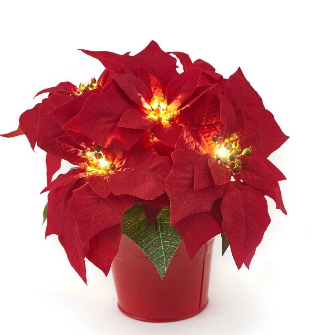 Homeseasons 10'' LED Pre-Lit Red Artificial Poinsettia Plant in Red Iron Pot, Battery Operated Lighted Holiday Floral Arrangement and Christmas Centerpiece by Homeseasons