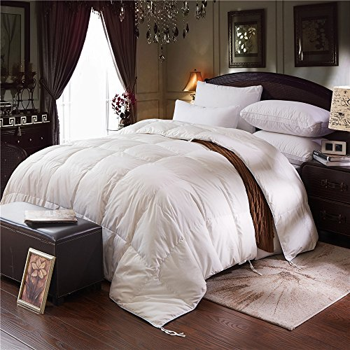 Zoom 75% White Goose Down Comforter Queen Size ,100% Cotton Shell With Corner Tabs, 750 Fill Power,Box Stitched Bedding Comforter,Lightweight,Hypo-allergenic (Queen 88-by-88 inches)