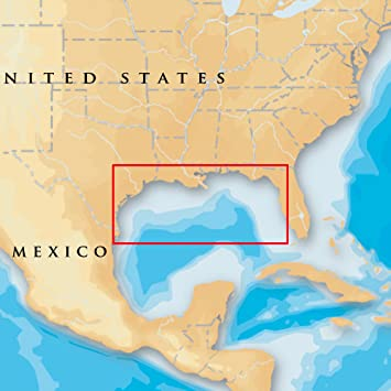Amazon com: Navionics Platinum Plus 907PP - Gulf Of Mexico