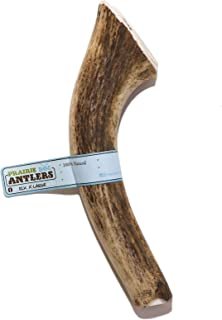 product image for Prairie Dog Pet Products Elk Antler Treat, X-Large (Assorted Color)