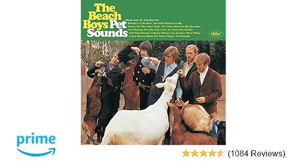 pet sounds dvd audio review