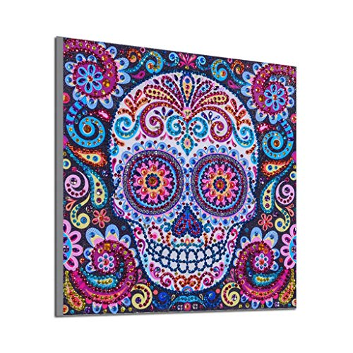 Mikilon Special-Shaped Diamond Painting Square, Part Drill 5D Rhinestones DIY Painting Craft Home Decor (Bohemian Skull) -