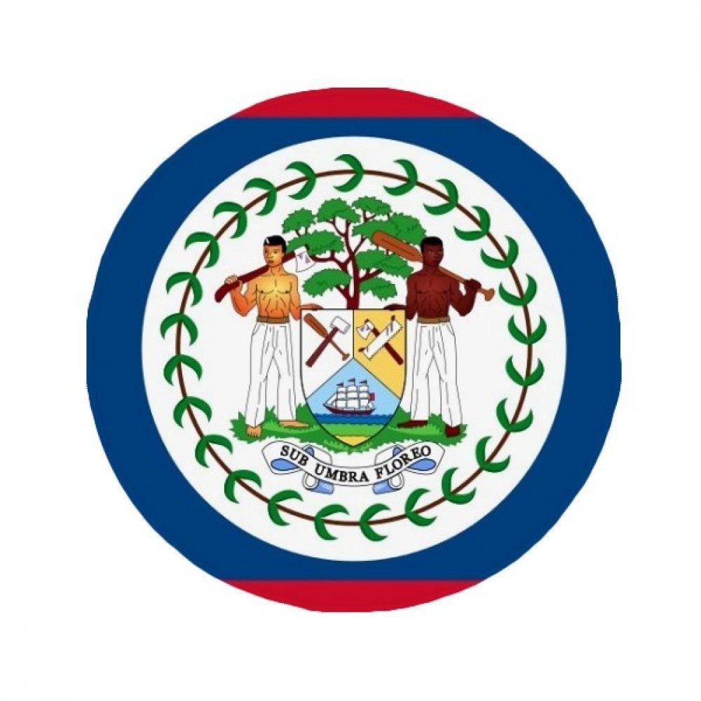 60X60cm DIYthinker Belize Flag North America Country Anti-Slip Floor Pet Mat Round Bathroom Living Room Kitchen Door 60 50Cm Gift