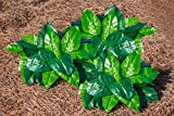 The Paragon Artificial Flowers - Set of 3 Hostas, Realistic Artificial Plants, Faux Plants, Polyester Leaves, Water, Weather Resistant, Home and Garden Decorative Silk Plants, Everyday Arrangements
