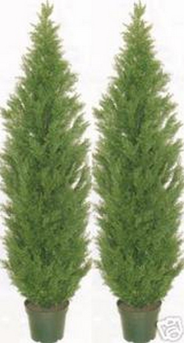 Two 5 Foot Artificial Topiary Cedar Trees Potted Indoor Outdoor Plants by Silk Tree Warehouse