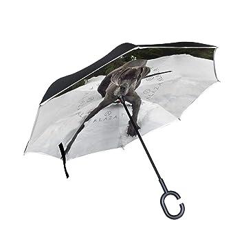 ce6561e83a3f Amazon.com : Jojogood Great-Dane Inverted Umbrella Reverse Auto Open ...