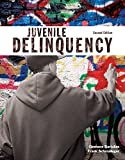 img - for Juvenile Delinquency (2nd Edition) (The Justice Series) book / textbook / text book
