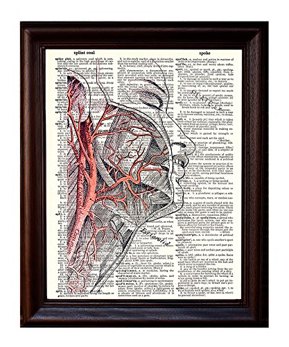 Fresh Prints of CT Human Face and Arteries - Dictionary Art Print Printed On Authentic Vintage Dictionary Book Page - 8 x 10.5