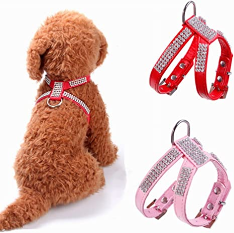 Arnés ajustable, collar decorado con pedrería para perros pequeños ...