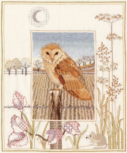 Derwentwater Wildlife Series Barn Owl Counted Cross Stitch Kit 14 count aida by Derwentwater Designs
