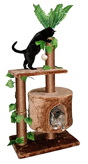 arbre a chat jungle