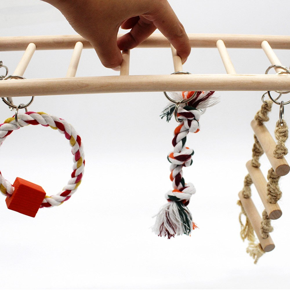 PetsMostHome Bird Toy for Parrot, Swings, Climb Ladders for Pet Trainning