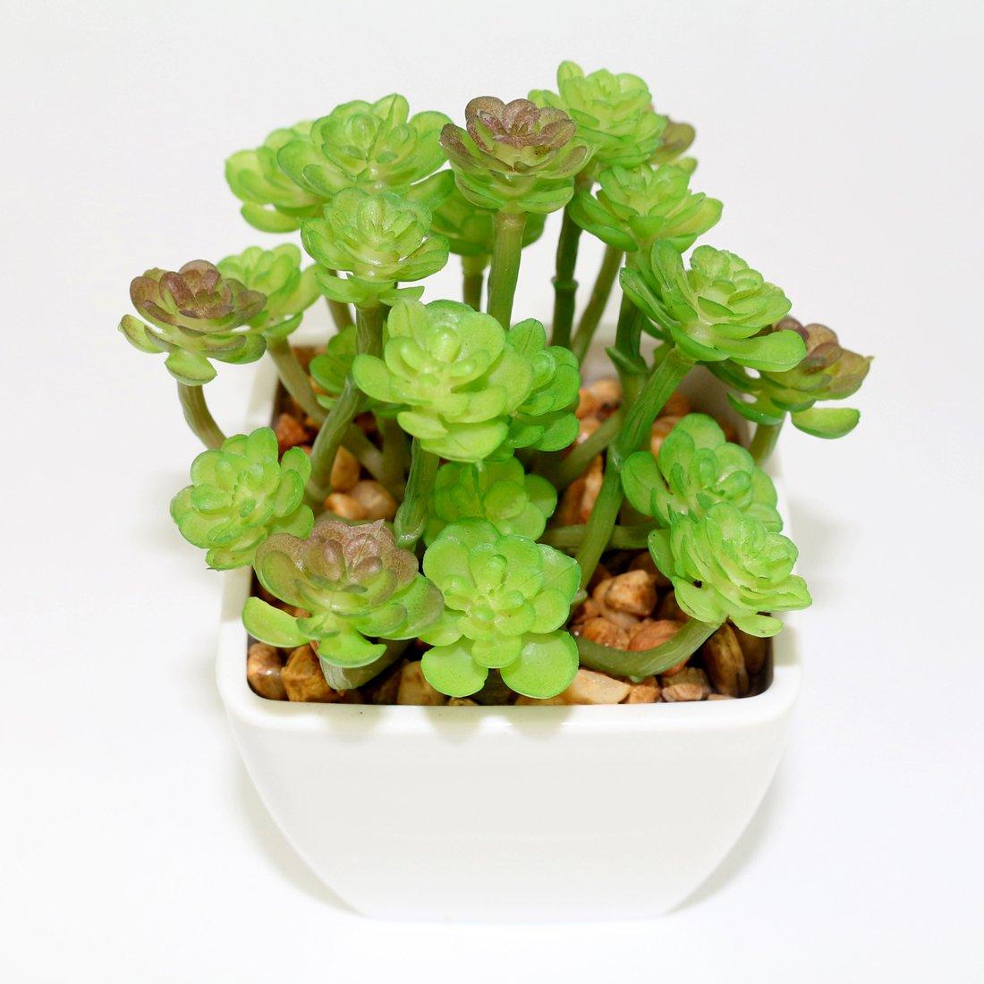 Resin Pots Myartte Artificial Succulent Plants Fake Succulents Mini Faux Plants for Home//Office Docor